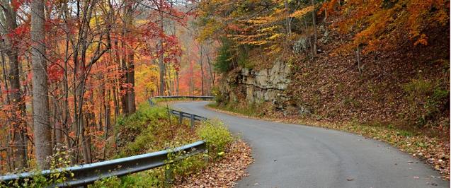 Fall_driving_scene